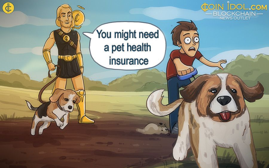 Russian Risk-Sharing startup, has developed a Blockchain-based insurance service for pets
