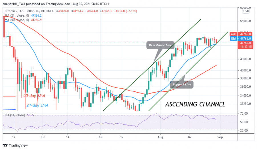 BTCUSD(Daily_Chart)_-_AUGUST_30.png