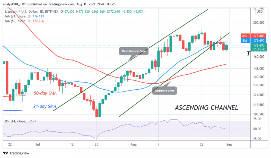 LTCUSD(_Daily_Chart)_-_AUGUST_31.png