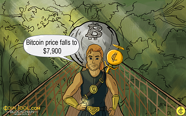 Bitcoin Price Falls to $7,900 as U.S SEC Rejects Winklevoss BTC ETF, $11 Bn Lost Overnight