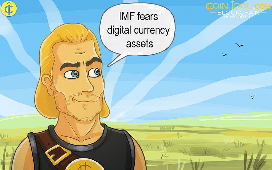 Continued vigorous growth of digital currency assets could form new vulnerabilities in the international financial system (IFS).