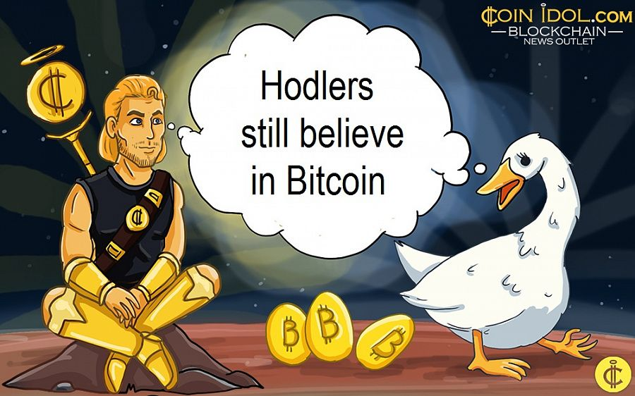 Hodlers still believe in Bitcoin