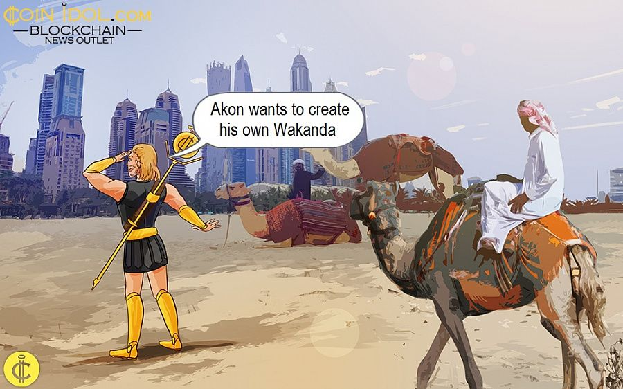 Akon wants to create his own Wakanda