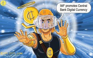 IMF Official Wants Private Companies and Central Banks to Jointly Promote Digital Currencies